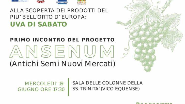 Progetto #ANSENUM – Antichi Semi Nuovi Mercati